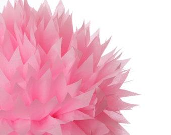 Pink 1 Large tissue paper pom poms