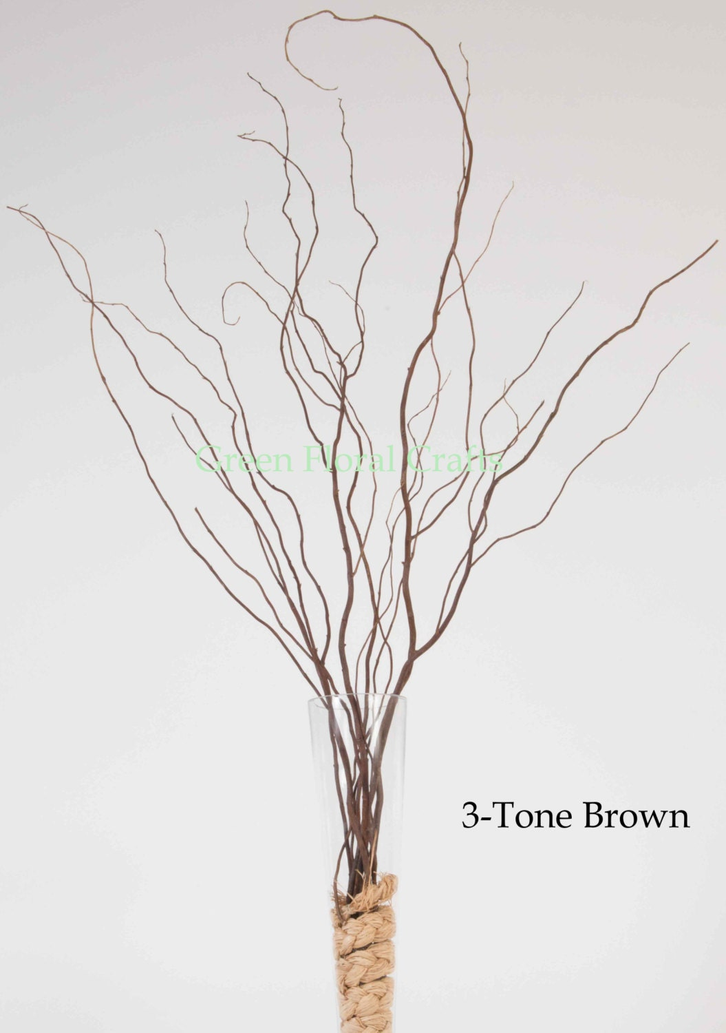 Curly Willow 3-4 ft, Bunch of 8-10 Stems, 4 Colors from ...