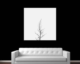 Forlorn Tree Photography Print