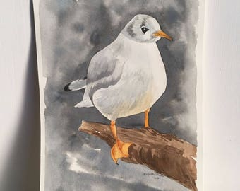 seagull with gray background, original watercolor painting