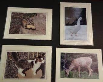 Set of 4 Original Photo Cards with Envelopes
