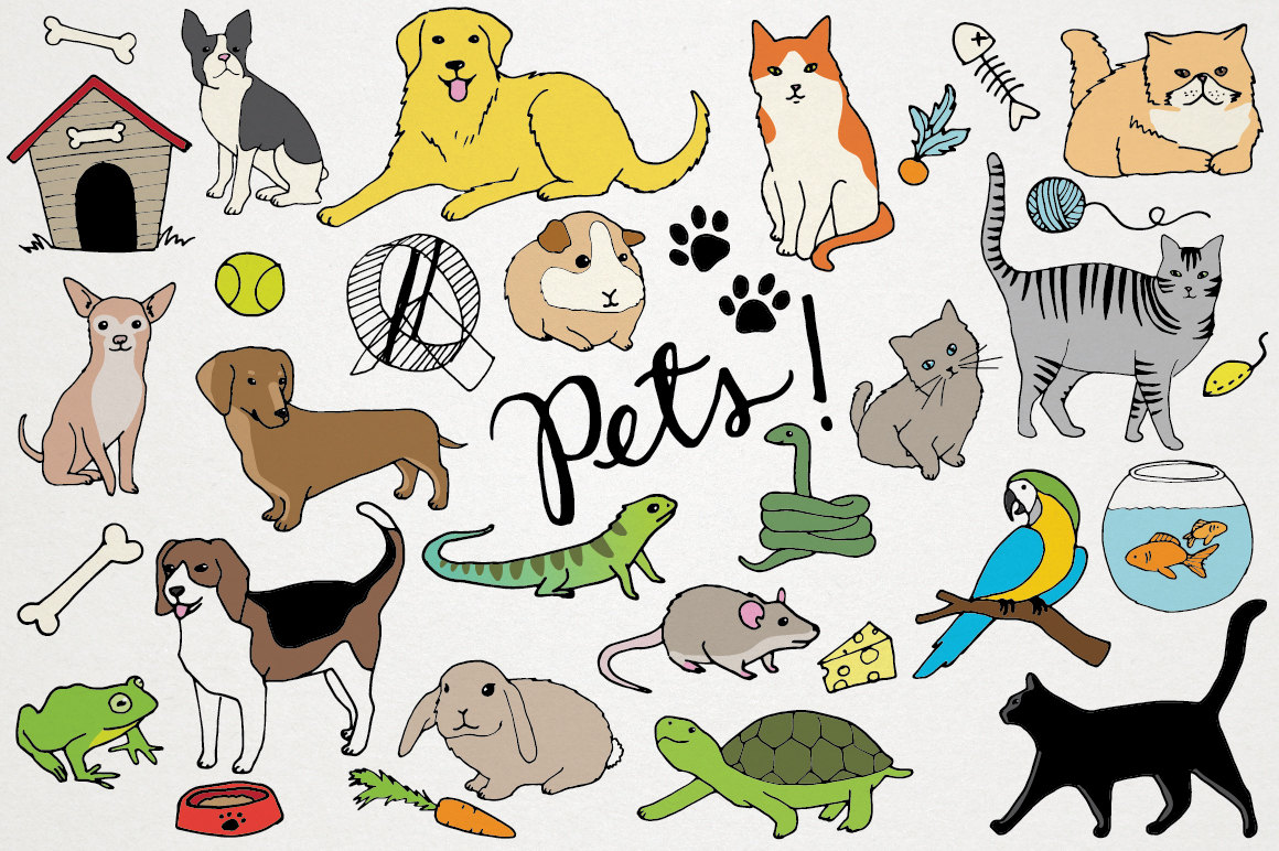 Pets Clipart Animals clip art Cats and dogs hand drawn