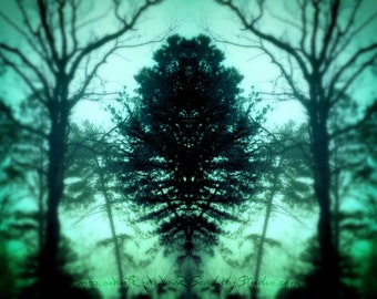 Dark Forest : surreal photo lake mist reflection mirror image haunting photography blue green teal home decor 8x10 11x14 16x20 20x24 24x30