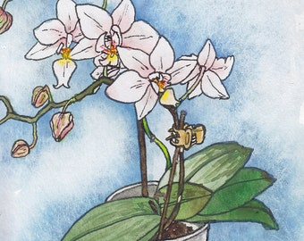 Mini White Orchid (4x6 Original Watercolor on Arches Hot-Press Paper with 5x7 White Matting)