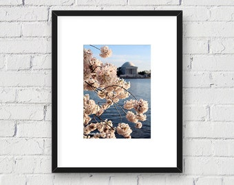 Jefferson Memorial Cherry Blossoms, Washington, DC Monument, Springtime: 5x7 Matted Photo