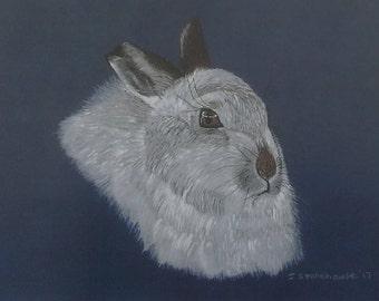 White Rabbit Greetings Card