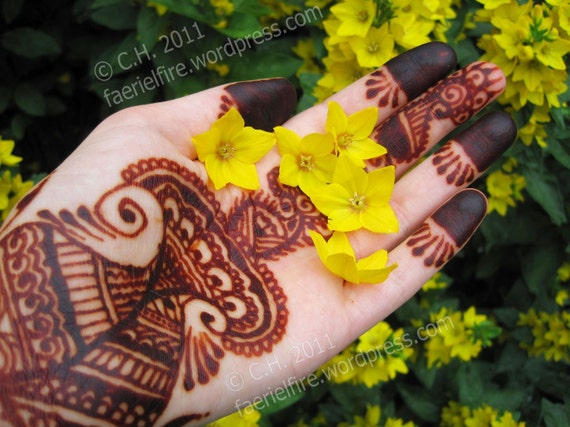 Mehndi Body Art Quality Henna : Oz fresh mixed henna paste cone natural safe body art