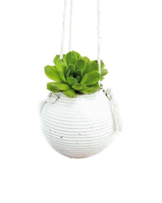 Modern Planter/Concrete Planter/Hanging Planter/Modern Decor/Succulent Planter/Indoor Planter/Office Planter/Sphere planter/orb planter