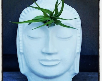 Buddha wall planter, air plant holder, wall planter with plant, eye of the Buddha, 3rd eye, third eye