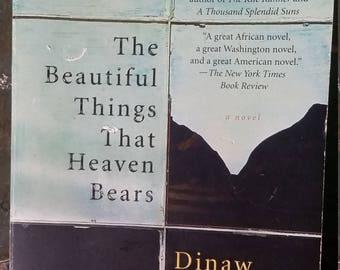 The Beautiful Things That Heaven Bears, Dinaw Mengestu