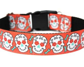 "Halloween Dog Collar 1.5"" Skull Dog Collar"
