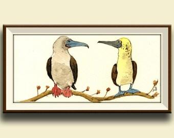 PRINT-Red footed booby bird- galapagos islands bird lover art watercolor -Art Print by Juan Bosco