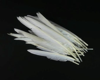 3 Big White Feathers Natural Feathers Quill Feathers Craft Supplies Scrapbooking Hat Embellishments Wedding Supplies