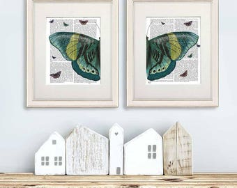 Butterfly Turquoise & Yellow Collection 2 Prints Turquoise wall art shades of green butterfly art insect art insect gift butterflies decor