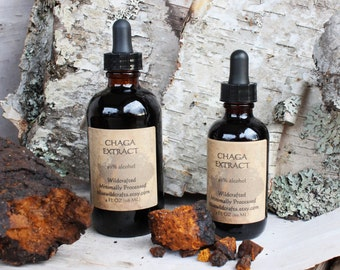 Chaga Liquid Extract - Chaga Tincture - Made from 100% Wild Harvested Chaga - High Potency - 2oz. or 4oz.