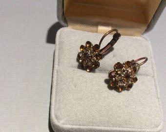 Sparkly Brown Rhinestone Earrings