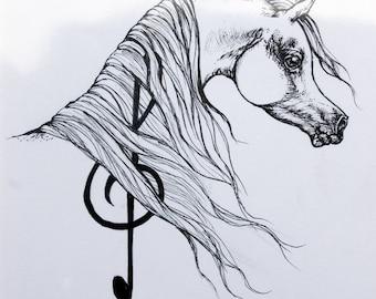 Arabian horse, equine art, equestrian, hors portrait, original pen drawing