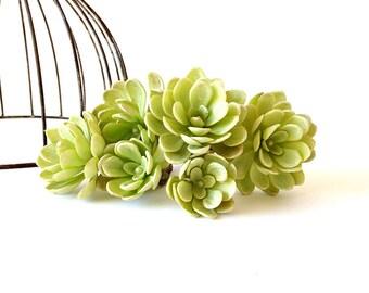 Succulent, faux succulents, succulent cuttings, succulent planter, faux, succulent favor, fake flowers, aeonium, hens and chicks,