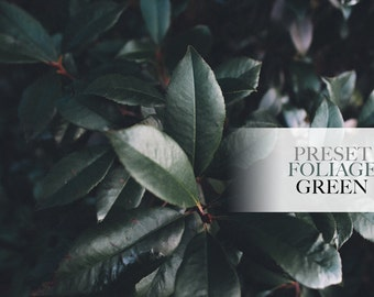 Nature Green Foliage - Single Preset - Adobe Lightroom Preset for 4, 5, 6 and CC