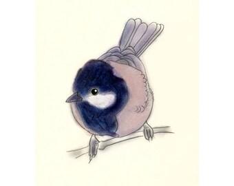 """Bird wall art  Little Bob  (4"""" X 6"""" print) - 4 for 3 sale"""