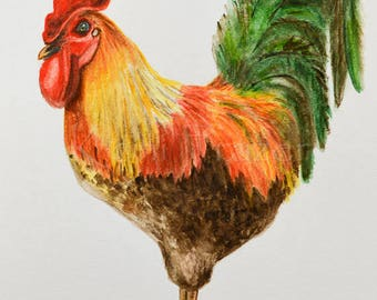Rooster original watercolor painting, chicken, kitchen art