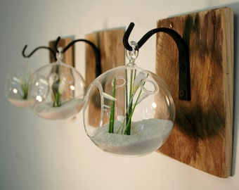 Individual Glass Globe Wall Decor Each Mounted To Recycled Wood Board With  Wrought Iron Hook For