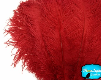 """Large Wedding Feathers, 10 Pieces - 19-24"""" RED Ostrich Dyed Drabs Body Feathers : 3607"""