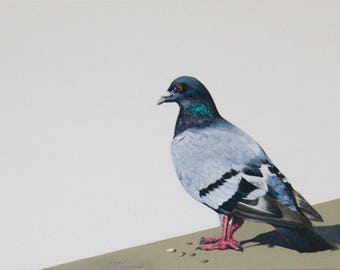 Robert, original painting of a pigeon acrylic on canvas