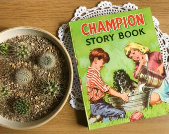 1960's Children's Story Book - 'The Champion Story Book'