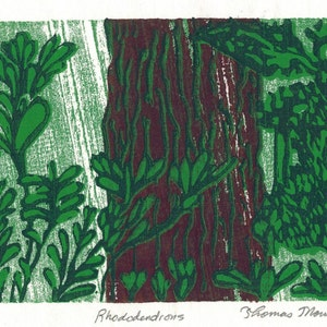 Rhododendrons 4 color woodcut print matted and framed