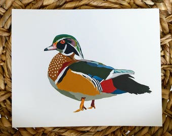 Wood Duck 8x10