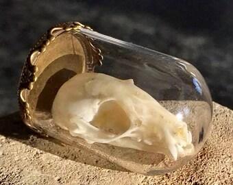 Fruit Bat Skull Pendant
