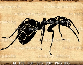 Vector ANT, AI, eps, pdf, SVG, dxf, png, jpg Download, Digital image, graphical, discount coupons
