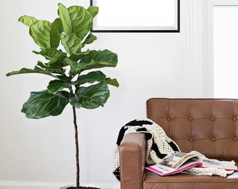 Palm Tree Print, Black and white, Wall Art, Tropical, Gallery Wall Art #83