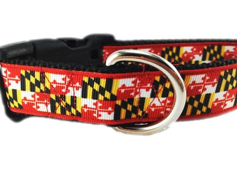 Dog Collar, Maryland, 1 inch wide, adjustable, quick release, metal buckle, chain, martingale, hybrid, heavy nylon