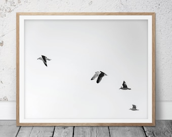 Black and White Photography, Photography, Home Decor, Flying Birds, Bird Prints, Flock of Birds, Fine Art Photography, Black White, FM-119