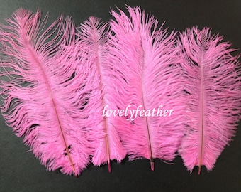 14 Pieces beautiful hot pink Ostrich plumage feathers