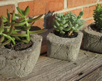 Hypertufa Planters Set of 3