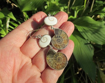 Natural Shiva Shells and Ammonite Earrings, 925 Silver, One of a Kind