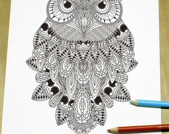 Exquisite Owl Coloring page - Adult Coloring Page Print