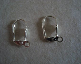 Earrings with silver clasps
