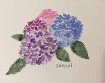 Original watercolour painting Hydrangea