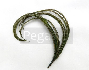 NATURAL Green Mini cruelty free peacock feather plume (12 Plumes)(16 color options) boutonnieres,earrings,fascinators, wedding invitations
