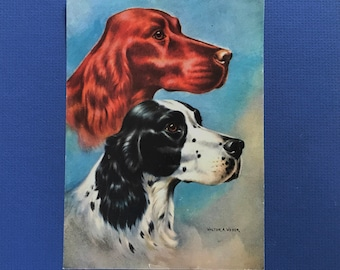 1940's Irish Setter & English Setter Art by Walter Weber Mother's Day Gift!