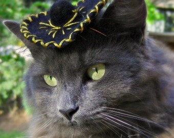 Cat Sombrero - Cinco de Mayo - Black Mariachi - Wool Felted Hat - Newborn Photo Prop