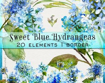 Watercolor clipart, hand painted clipart, hydrangea clipart, boho wedding clipart, summer clipart, flower clipart, watercolor hydrangea