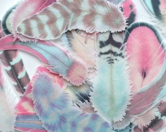 Edible Feathers Sherbet Cloud Boho Winter Wedding Cake Decoration Wafer Paper Pink Blue Rustic Wild One Birthday Cupcake Toppers Cookies RTD
