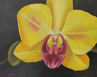 "Yellow Orchid, 8""x8"", Oil on Canvas, handmade art, gift ideas, wall decor"