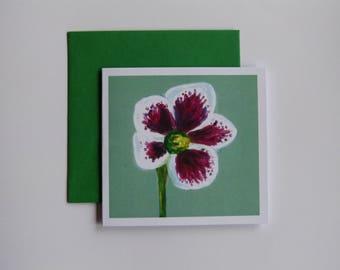 Hellebore - greeting card
