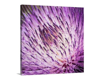 Thistle Flower Art, Thistle Picture, Magenta Thistle, Purple Thistle, Thistle Photograph, Wild Thistle Flower, Wildflower Art, Thistle Gift